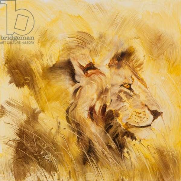 Lion, 2014 (oil on board)
