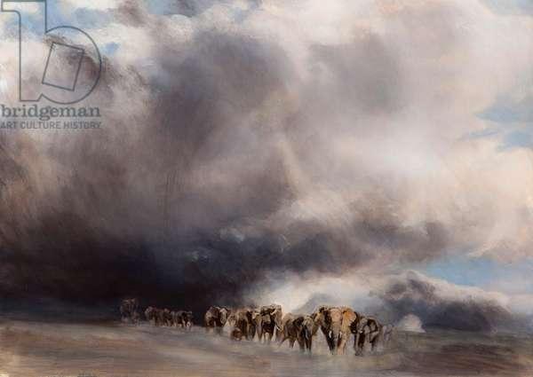Elephant through the storm, 2015, (oil on canvas)