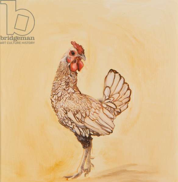 Lacewing chicken, 2016, 9oil on canvas)