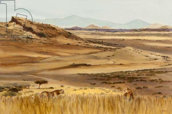Cheetah pair hunting, 2013 (oil on canvas)
