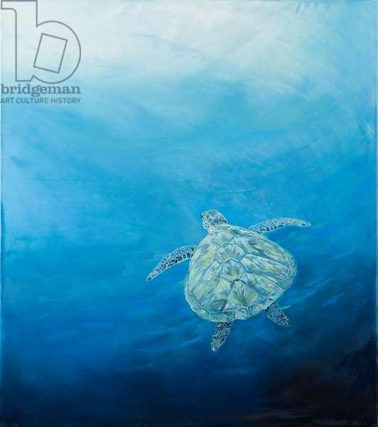 Sea Turtle,2017, oil on canvas