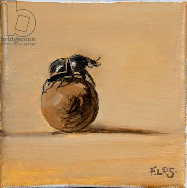 Dung beetle, 2019 (oil on canvas)
