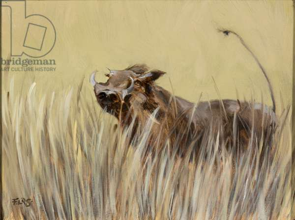 Warthog, 2019, oil on canvas