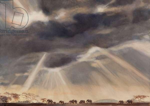 Elephant at Lewa, 2015, (oil on canvas)