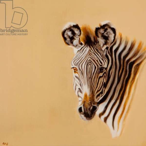 Grevy Zebra, 2014 (oil on canvas)
