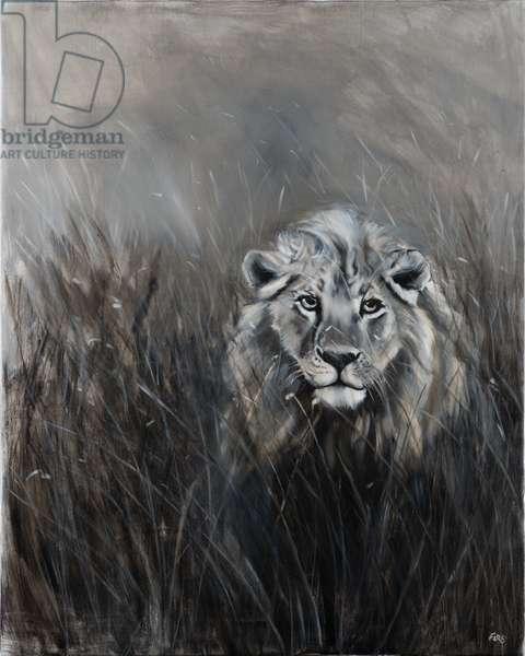 Lion in monochrome 1, 2018 oil on canvas