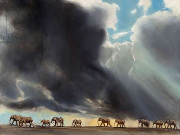 Elephant in storm, 2014 (oil on canvas)