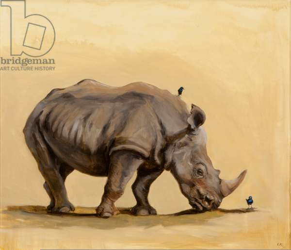 White rhino and starlings, 2012, (oil on canvas)
