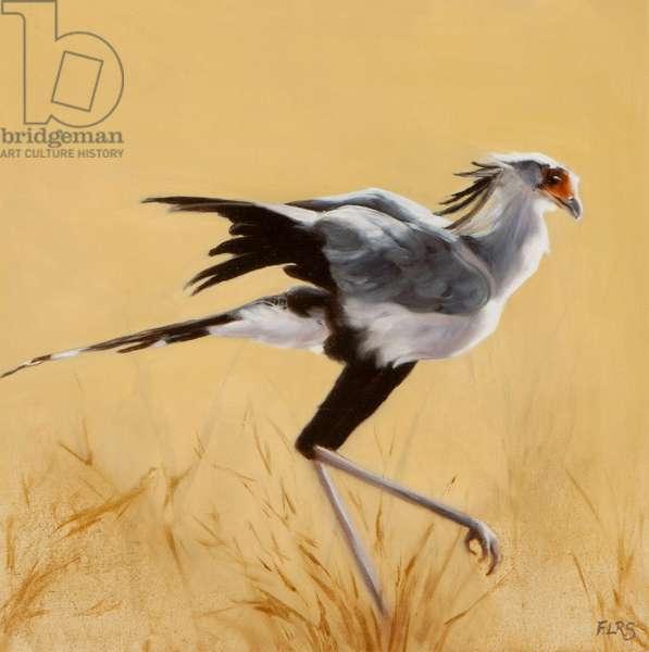 Secretary bird walking, 2015 (oil on canvas)