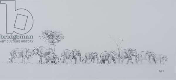 Elephant family, 2018, (oil on canvas)
