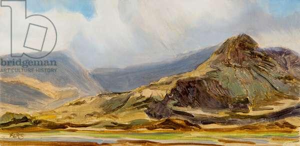 skye landscape 2 , 2016, (oil on canvas)