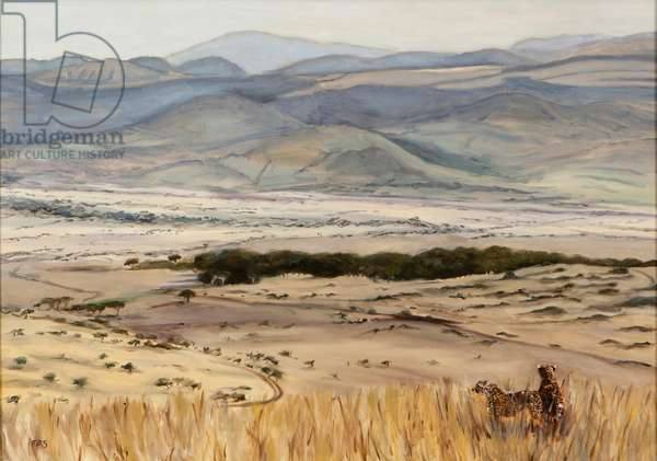 Cheetah pair in landscape, 2014 (oil on canvas)