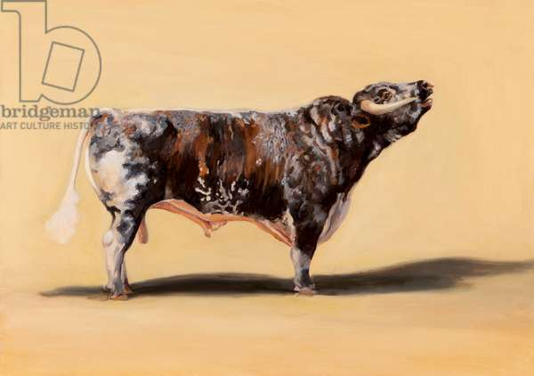 Longhorn bull, 2016 (oil on canvas)