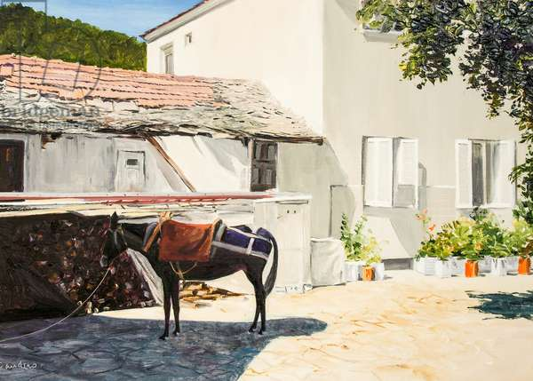 Mule in Shade, Thassos, Greece
