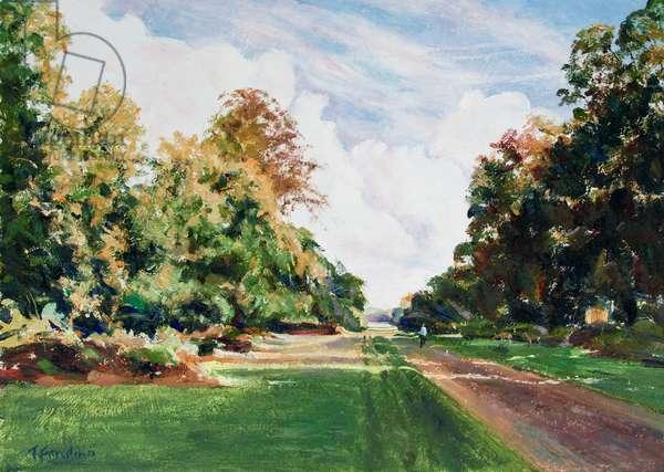 Knole Park, Sevenaoks