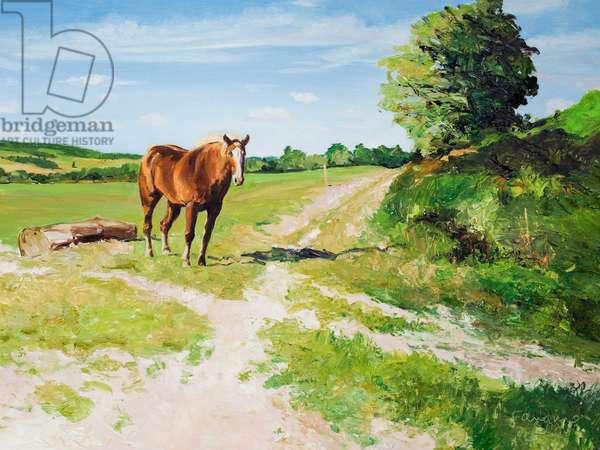 Horse near Otford, Kent