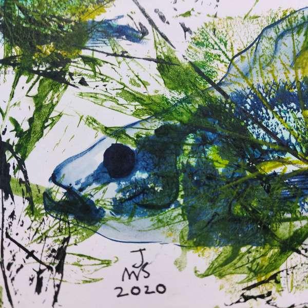 fish head 2020 oils