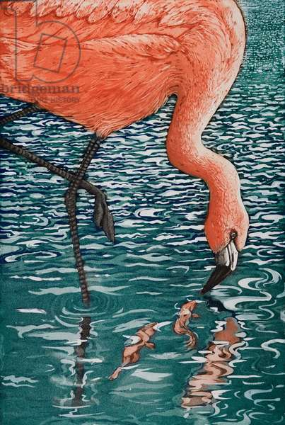 Flamenco Flamingo, 2013, (etching/aquatint)