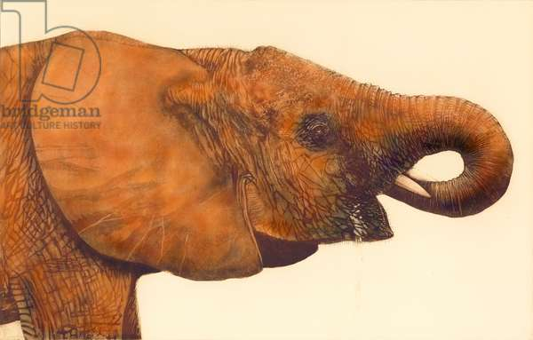 Quenching the Thirst, 2006, (etching/aquatint)
