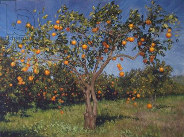 Suntree, 2013, oil on canvas