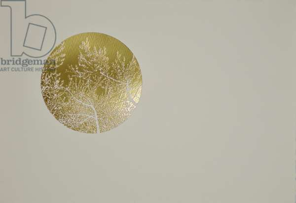 Silent olive, 2017, hot stamping leaf roll on paper