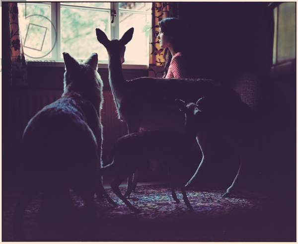 The Dark Room, 2014, (photography)