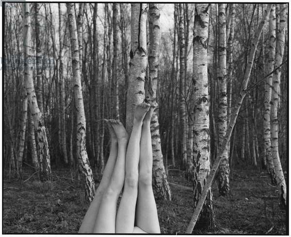 What If These Were Legs - 1, 2016, (photography)