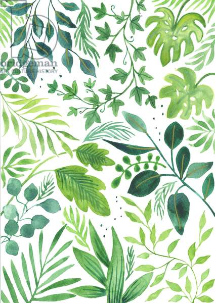 Leafy Medley