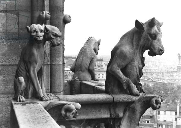 Two gargoyles from the balustrade of the Grande Galerie of the west facade, replica of a 12th century original (stone) (b/w photo)