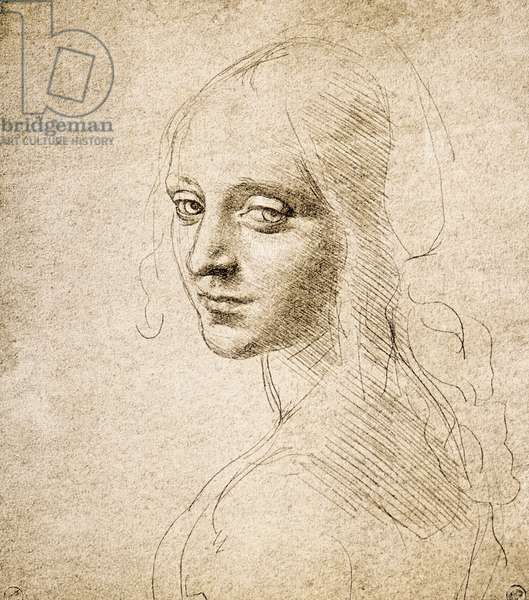 Study for the Head of a Girl, c.1483 (silverpoint on paper)