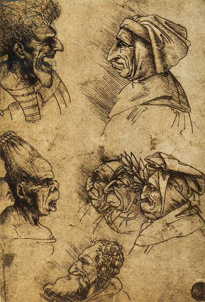 Seven grotesque heads; drawing by Leonardo da Vinci. Gallerie dell'Accademia, Venice