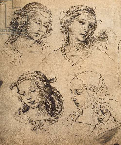 Study of four female faces; drawing by Raphael. Gallerie dell'Accademia, Venice