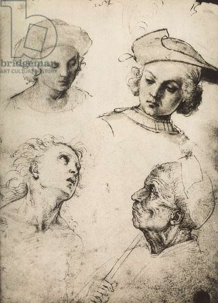 Study of four male faces; drawing by Raphael. Gallerie dell'Accademia, Venice