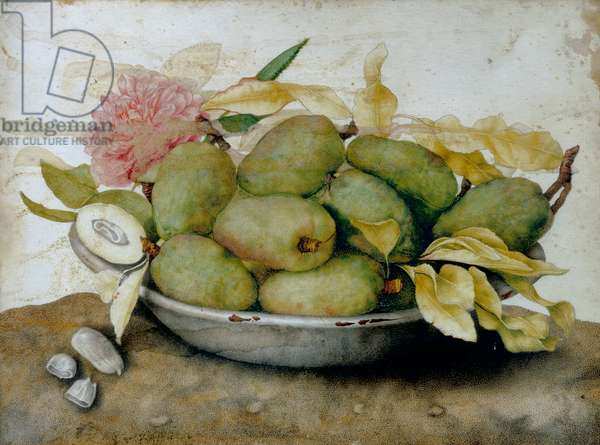 Plate of loquats, almonds and a rose
