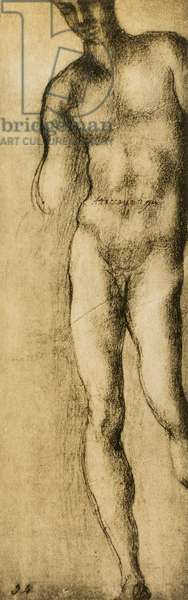 Study of a masculine figure, drawing by Michelangelo. Casa Buonarroti, Florence