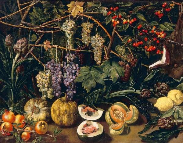 Grapes and pumpkins