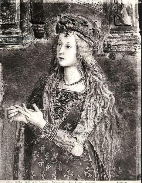 St. Catherine, possibly a portrait of Lucrezia Borgia (1480-1519) from the Lives of the Saints cycle, Sala dei Santi, 1492-94 (fresco) (b/w photo)