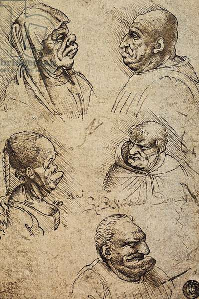 Five grotesque heads, drawing by Leonardo da Vinci. Gallerie dell'Accademia, Venice