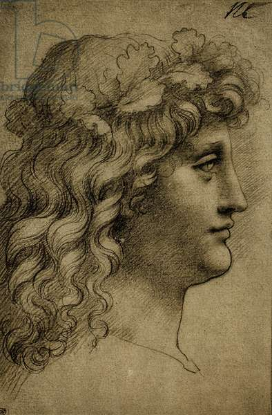Head of a young man; drawing by Leonardo da Vinci. The Louvre, Paris