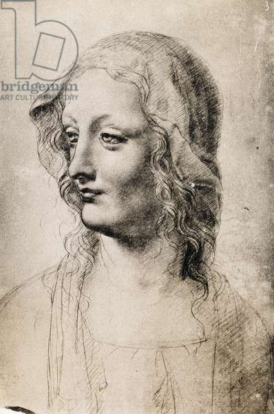 Head of a Young Woman (charcoal on paper)
