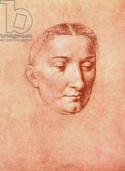 Study for the head of a saint, drawing by Leonardo da Vinci. Gallerie dell'Accademia, Venice