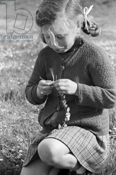Little girl creating a necklace of daisies, 14th April 1940 (b/w photo)