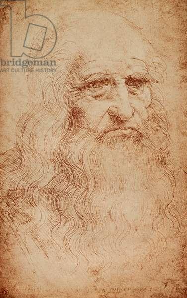 Self-portrait of Leonardo da Vinci; celebrated drawing by the Master. Biblioteca Reale, Turin