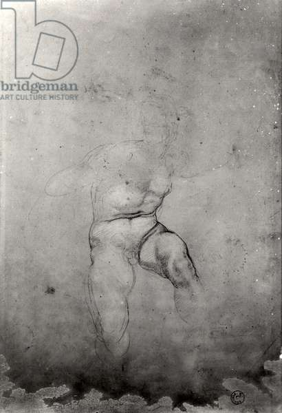 Male Nude (pencil on paper) (b/w photo)