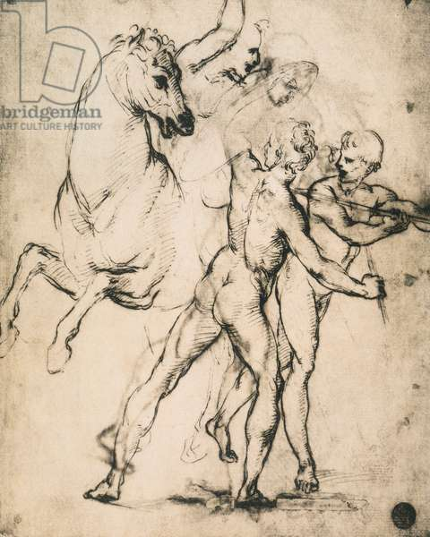 Male nudes with a horse; drawing by Raphael. Gallerie dell'Accademia, Venice