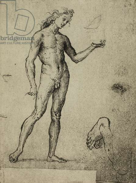 Male nude study; drawing by Raphael. Gallerie dell'Accademia, Venice