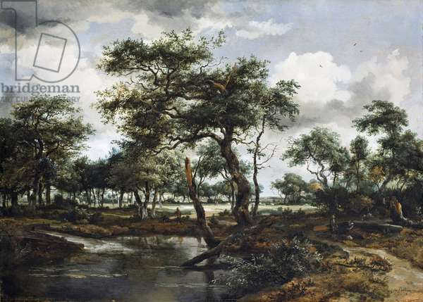A Pond in the Forest, 1668 (oil on oak panel)