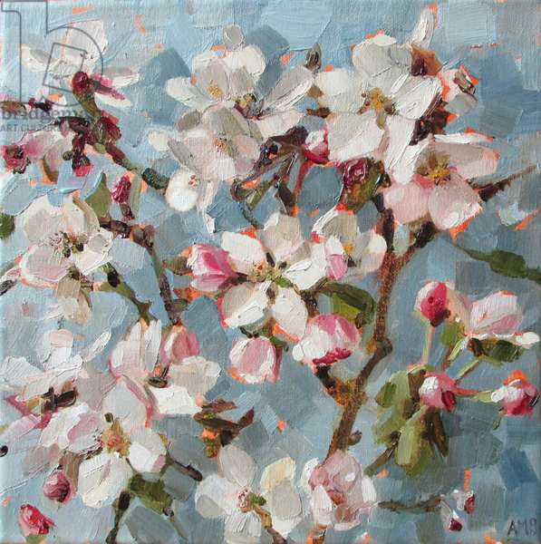 Apple Blossom II, 2017, (oil on linen)
