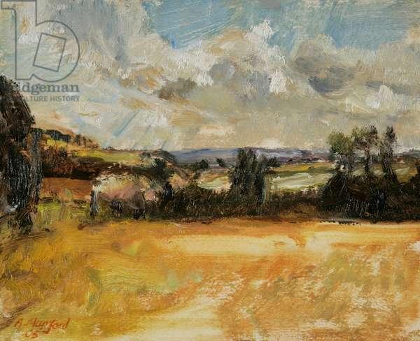 Autumn Sky, Polgrean Field, 2005 (oil on paper)