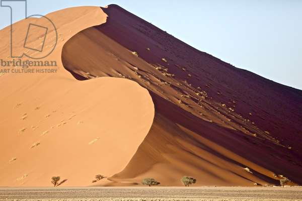 Dune, Sossusvlei, 2017, (photograph)